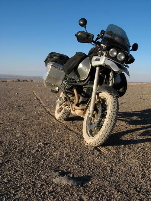Atacama ja tsikkel