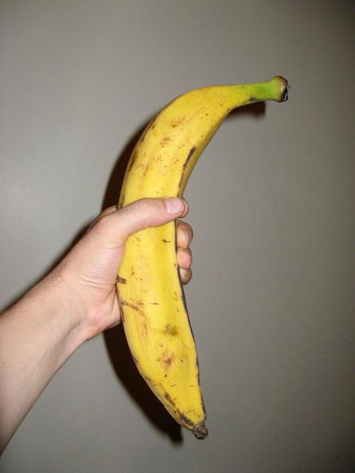 Suurim banaan - võrdlusena seda hoiab minu suuremapoole kämmal