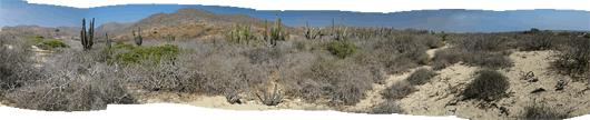 Baja maastikud (9)