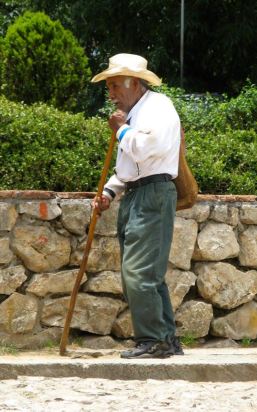 Vanamees kepiga
