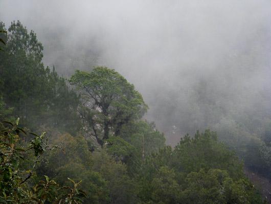 Pilvedega üheskoos mägedes