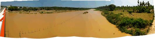 Shokolaadi värvi palmidega ääristatud jõgi