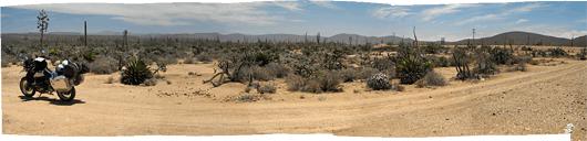 Baja loodus (3) - Gessu kohal on agaavi õitsev võrse