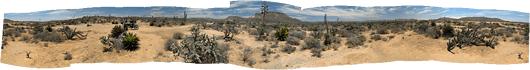 Baja loodus (4)
