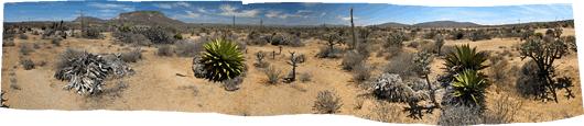 Baja loodus (5)
