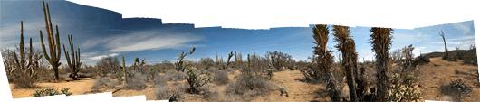 Baja loodus (7)