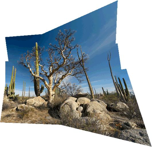 Baja loodus