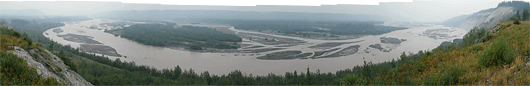 Metsasuitsus jõesäng