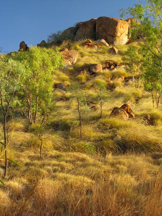 Kimberley loodus
