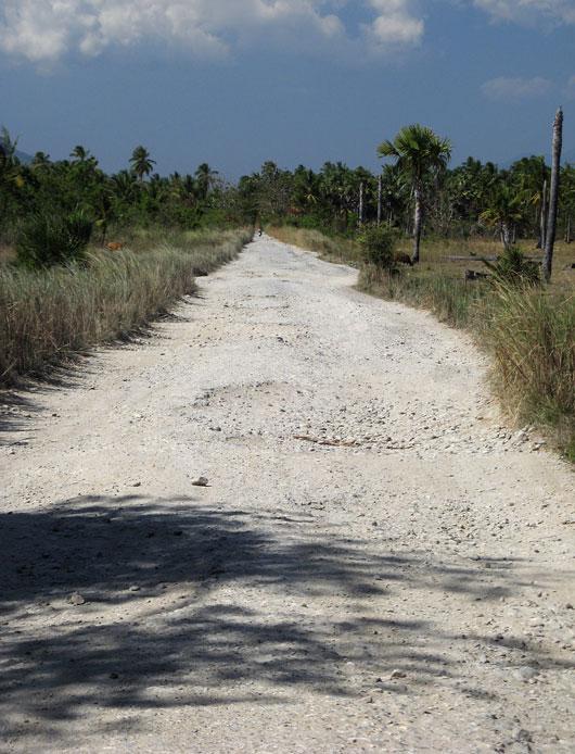 Keskmine tee Timori lõunaosas