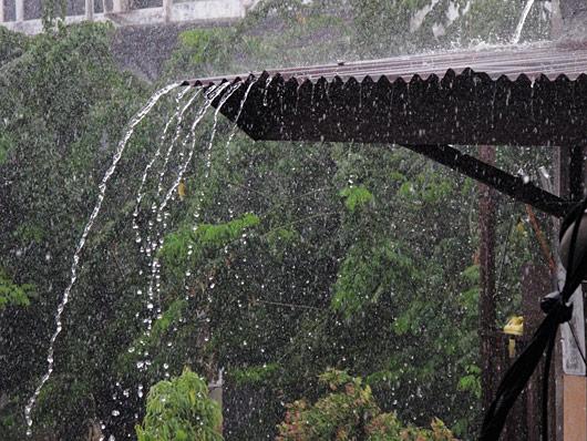 Troopiline vihm