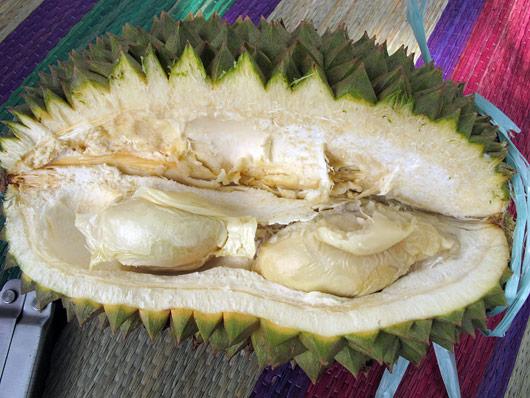 Durian seest - söödav on vaid see seemnete peal olev kiht.