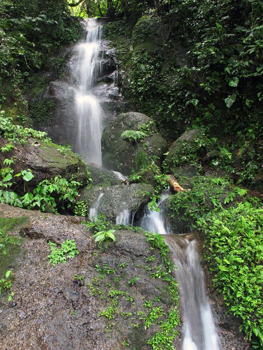 Mägidžungli kosk (1)