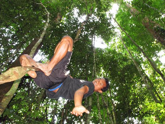 Giid mööda spiraalis langevaid puuoksi ronimist demonstreerimas