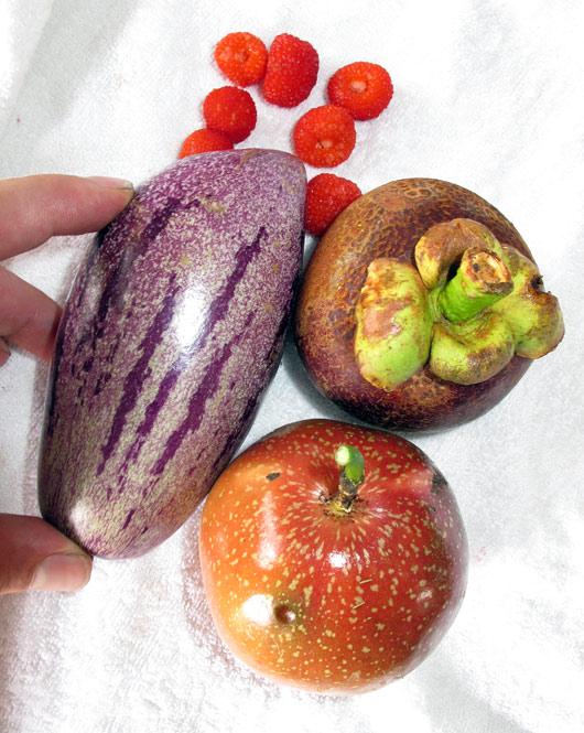 Turult leitud eksootilised puuviljad